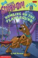 Go to record Scooby-Doo! : Howling on the playground