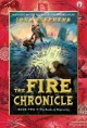 Go to record The fire chronicle : The books of beginning, Book two