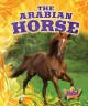 Go to record The Arabian horse