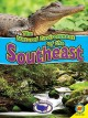 Go to record The natural environment of the Southeast
