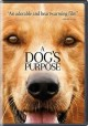 Go to record A dog's purpose