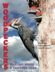 Go to record Woodpeckers : drilling holes & bagging bugs