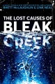 Go to record The lost causes of Bleak Creek : a novel