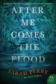 Go to record After me comes the flood : a novel
