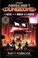 Go to record Minecraft dungeons: the rise of the arch-illager